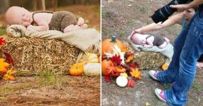 bebisbild, hjort, saga, överraskning